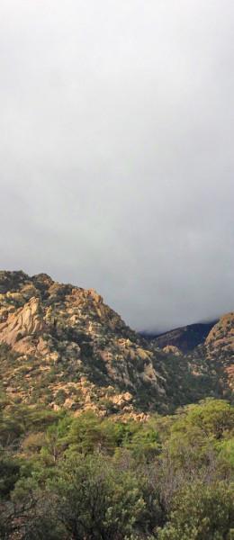 cochise-mist